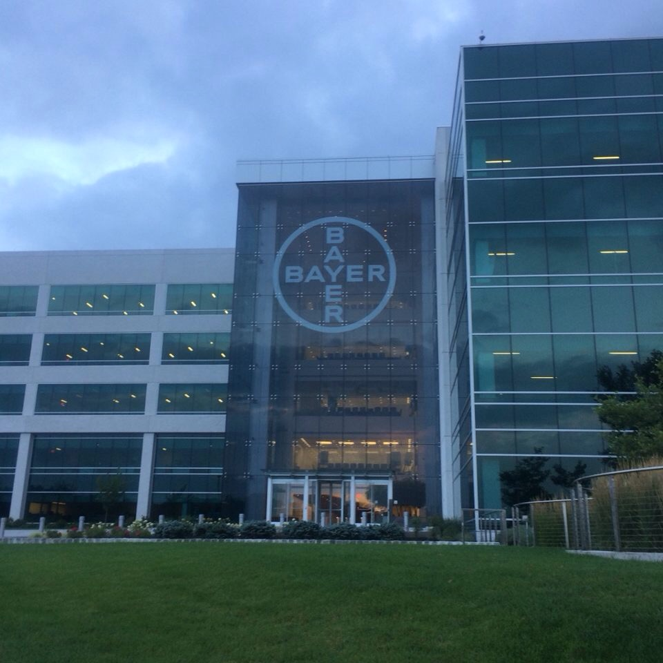 Getting an early start—a summer morning at Bayer, where Nevena and a handful of other Sternies interned. (Photo credit: Nevena Georgieva)